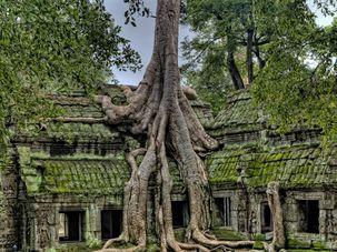 Kambodža - Siem Reap