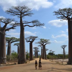 Taxi broussom po Madagaskare - 1.diel